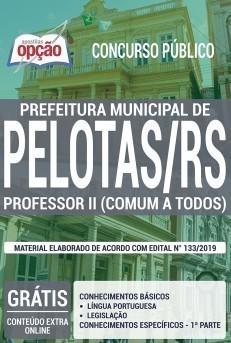 Apostila Professor II PDF e Impressa